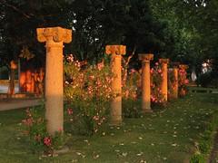 Columnas / Columns (ajgelado) Tags: sunset espaa canon garden spain jardin row powershot column puestadesol zamora fila columna a710 100vistas theperfectphotographer gettyimagesiberiaq3