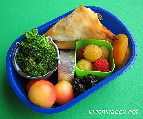 Colorful spanakopita bento lunch for preschooler