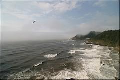 (Wind Home) Tags: lighthouse mist beach water fog oregon coast northwest lanecounty naturesfinest supershot