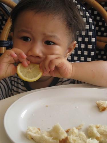 a taste of lemon