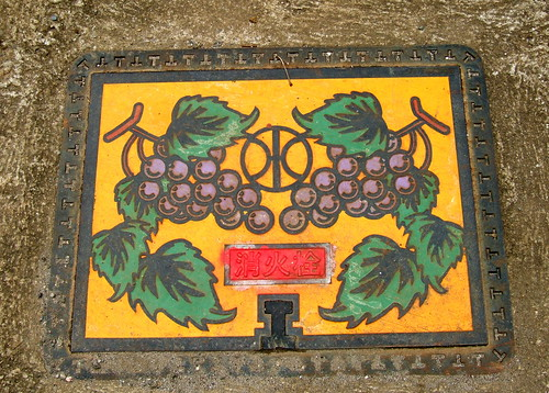 Yamanashi Manholes