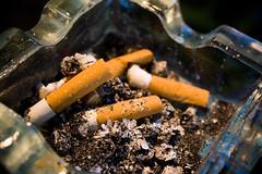 Smoked in Public (TomazdaBeer) Tags: smoke smoking ash tray ashtray sigaret siggies sigs sigaretten siggaret siggarettes sigerates siggerretas
