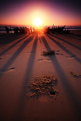 Shadows Of The Past (Garry - www.visionandimagination.com) Tags: shadow sun beach nature sunrise skeleton outdoors sand pov oz footprints australia creativecommons 5d cloudless wreck aus schatten longshadows schattenspiel seqld crabholes visionandimagination oct72008explore11 wwwvisionandimaginationcom