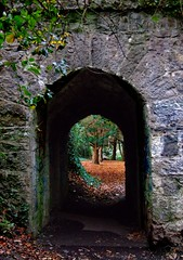 Narrow Passage (Eiretrains) Tags: park city autumn ireland red dublin irish leaves stone leaf arch tunnel eire autumnleaves short archway passage narrow stannes stannespark clontarf dublincity raheny codublin saintannespark autumn2008images
