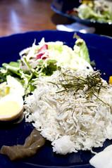 釜揚げしらすご飯, 鎌倉かなえ, 鎌倉