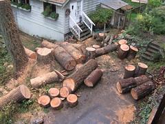 pre-firewood