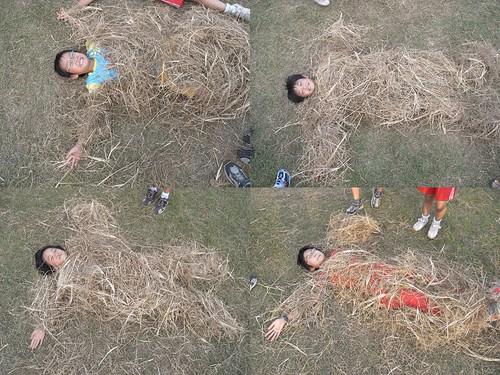 你拍攝的 18稻草人。