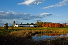 Autumn light, Kerr's Farm (nosha) Tags: november blue autumn trees light red sky orange usa lake fall nature water beautiful beauty yellow clouds barn rural reeds newjersey pond bush corn nikon day farm vibrant w nj mercer foliage solo pastoral 2008 hopewell korn kerr mercercounty gardenstate pennington kerrs penningtonnj pastorale naturesfinest 18200mm d40 nosha hopewelltownship cornstand ilovemyd40 hopewellnj kornstand didimentionilovemyd40 pwfall pwpartlycloudy