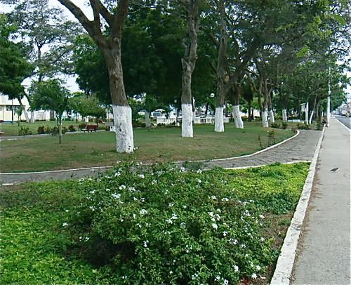 ecuador-coastal-park