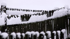 Fence-post chains (:Linda:) Tags: schnee snow fence germany village row thuringia woodenfence zaun fencepost nobw holzzaun picturewithmusic