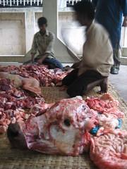My carpark (leetlegirl) Tags: cows religion goats dhaka bangladesh sacrifice gulshan eidaladha