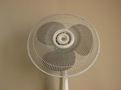 Fan (SapphireC2008) Tags: twitter365