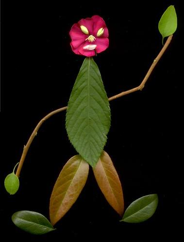 03984 Plant Person 2 400
