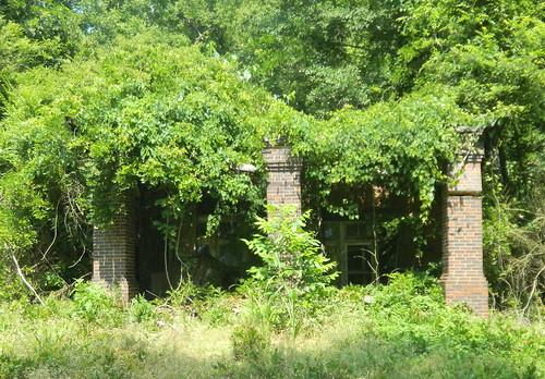 Chappells Ruins