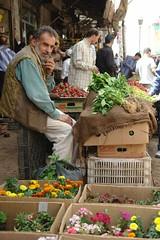 For the garden (CharlesFred) Tags: peace middleeast syria damascus hospitality damas siria honour  levant syrien syrie suriye  syrianarabrepublic  middenoost   shoufsyria    welovesyria aljumhriyyahalarabiyyahassriyyah siri