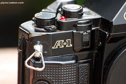 My Old Canon A-1 Zoom