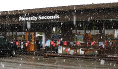 Snow at Moosely