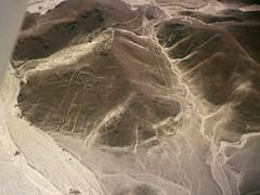 Nazca lineas astronauta - lines spaceman