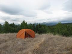 IMG_3226.JPG (JaredWO) Tags: alaska fire research boreal