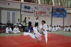 """manifestazione finale del  progetto """"Judo a scuola 07-08"""" (18)"""