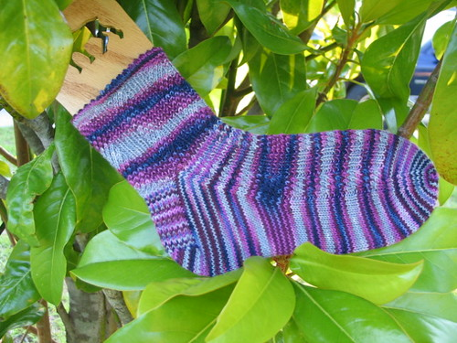 Cedar Creek Sock