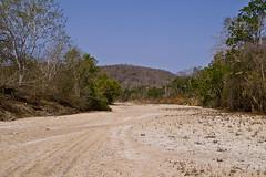 Arroyo chamela (Horrido!!! (Adolfo Montes)) Tags: mxico mexico media pentax selva jalisco chamela reservadelabiosfera cuixmalachamela selvamediacaducifoilia deciduosforest