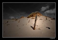 shifting sand dunes (Mariusz Petelicki) Tags: poland polska balticsea canonefs1022mm bałtyk łeba canon400d aplusphoto wydmyruchome shiftingsanddunes mariuszpetelicki