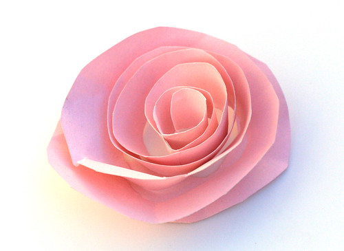 Pink paper rose