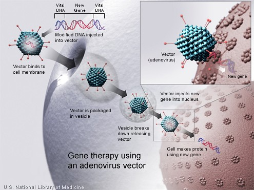 Gene_therapy by 1Droid JamLos.