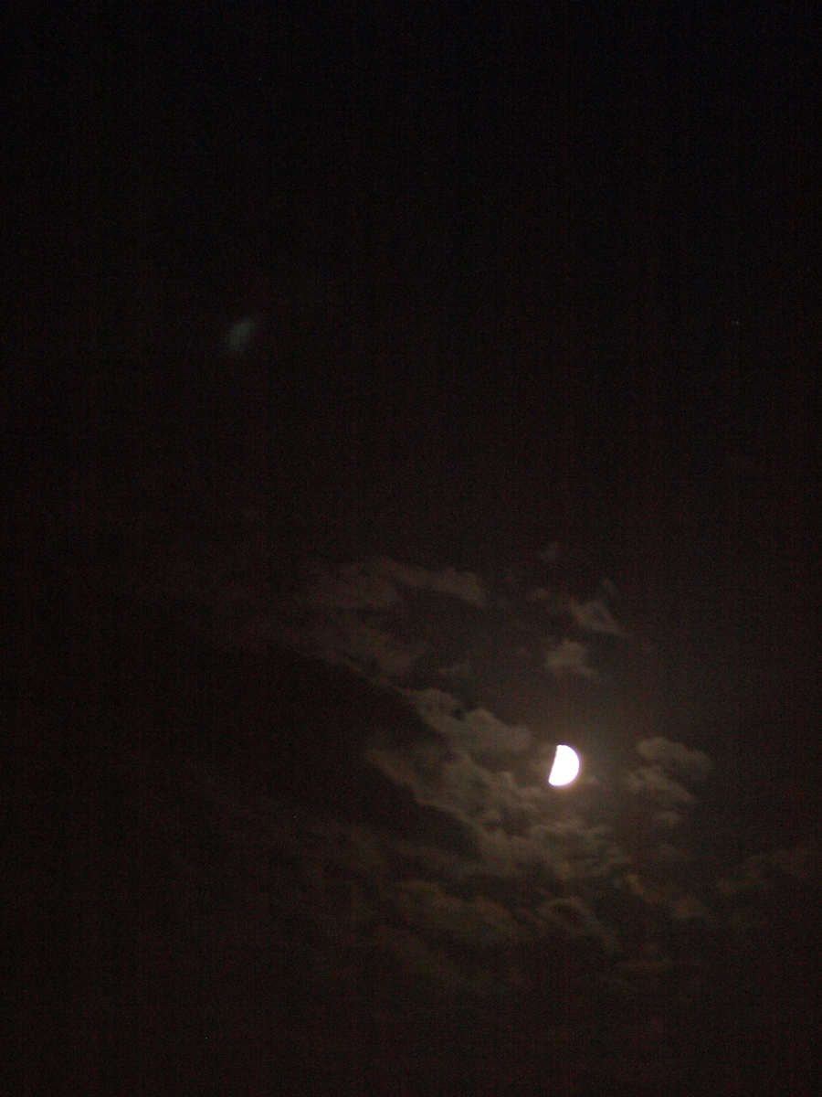 Algerian moon light