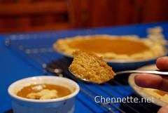 pumpkin pie texture