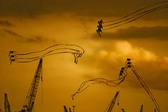 Kites (lastboltnut) Tags: party kite nikon singapore day parade celebration national ndp 2008 08 d80