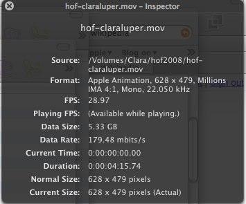 Snapz Pro X captured video stats