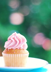 I want some sugar in my bowl. (*Peanut (Lauren)) Tags: still bokeh cupcake september272008 fromwsbirthday lmaoattheblownoutbowlcomment didwinstonhavepinkcupcakes iloveamaninpink heeheeigotvariouscupcakesbutthepinkonesweremineyoullseewinstonssoond pleasetrytoignoretheblownoutbowli 365daysofbokehproject