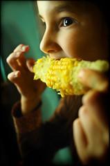 Troppo buone le pannocchie! (Mayastar) Tags: corn eating slurp cibo pannocchie mayastar chebuone rosolateconunpodiburroesale lepannocchiehannoicapelli bisognodicaffeina occhicheguizzano facevamofintachefosserolebarbie