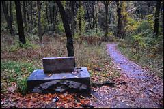 Sterling Grave
