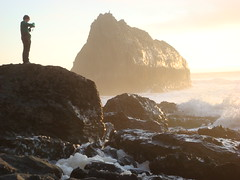 MartinsBeach_2007-209 (Martins Beach, California, United States) Photo