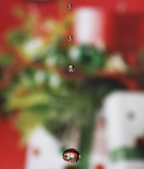 Friday evening funtime (Nancy Rose) Tags: christmas water refraction present waterdrops manualfocus dripping useatripod useaflash drippingfromthetap dripsinthesink bepatientandtakelots habingfunwhenbored ohohnancyshabingfunagain backogthesink
