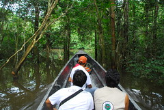Travelling by Motorised Canoe