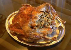 Thanksgiving Turkey 2008