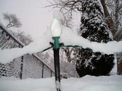 Snow 11-29-2008