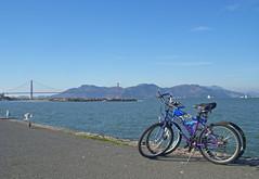 The Bikes I
