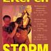Efter En Storm (2001)
