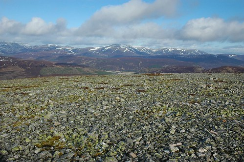 Lichen covered rocks with Cairngorms beyond