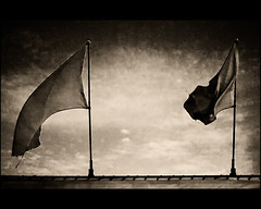 Flags Of No Particular Significance (Joel Bedford) Tags: bw white toronto black classic photoshop bedford design photo movement joel bare flags minimal blank processing backlit simple jab lightroom treatment significant significance
