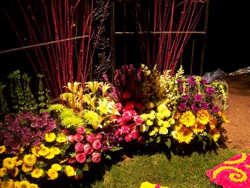 flowershow 024