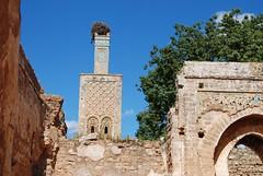 DSC_0090.JPG (tenguins) Tags: africa travel castle architecture ruins mosque arabic adventure morocco berber fortress islamic rabat chelle siteseeing chella romanruins