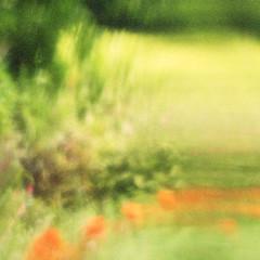 back garden summer (gagilas) Tags: delete10 delete9 delete5 delete2 delete6 delete7 delete8 delete3 delete delete4 save gagilas
