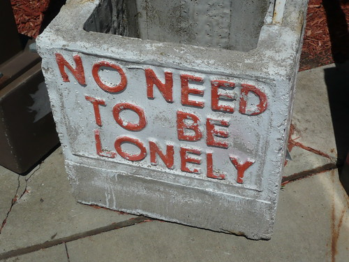 No Need to Be Lonely