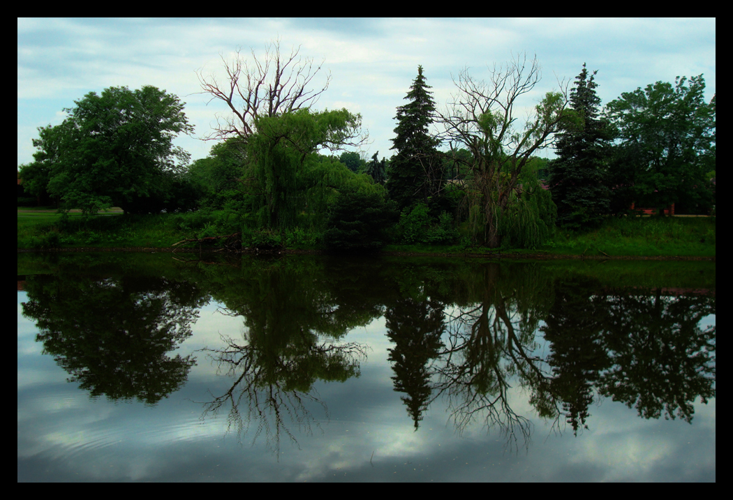 Reflections on a Cloudy Day